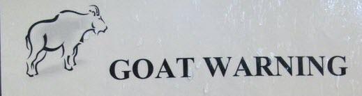 Goat Warning