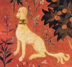 1960 Maidenform Bra ad - detail of dog