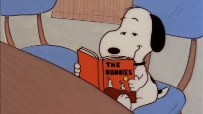 snoopy_library